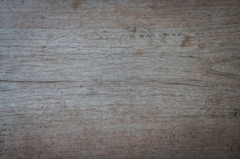Cracked wood close up
