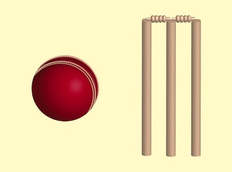 Cricket game design elements vector