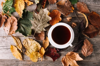 Cup of coffee in leaves