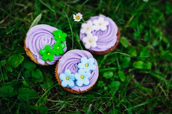 Cupcakes on the lawn