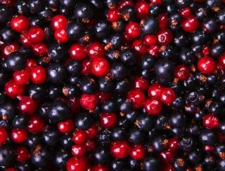 currants, blueberry