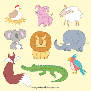 Cute animals in illustration style
