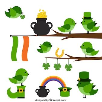 Cute birds for saint patricks day