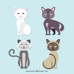 Cute black cat free illustration