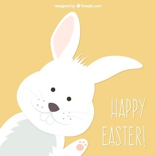 Cute bunny easter card
