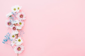 Cute flowers on pink background with space on right