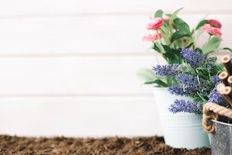 Cute gardening concept