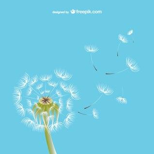Dandelion illustration vector