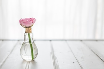 Decorative background with flower on a light bulb