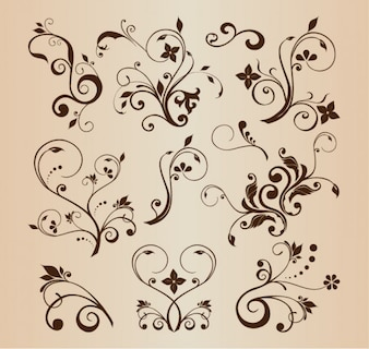 Decorative swirling flourishes illustration