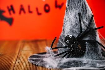 装飾的なウェブと帽子のクモ