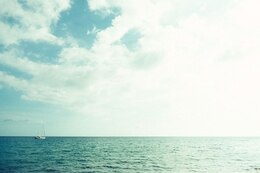 Dissolved sea