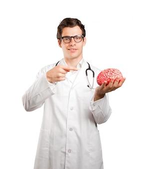 白い背景におもちゃの脳を持っている医師
