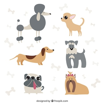 Dog cartoons pack