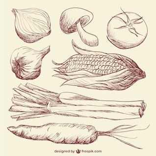 doodle vegetables art