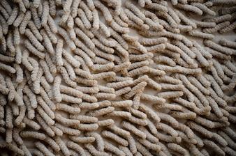 Doormat carpet mat texture background
