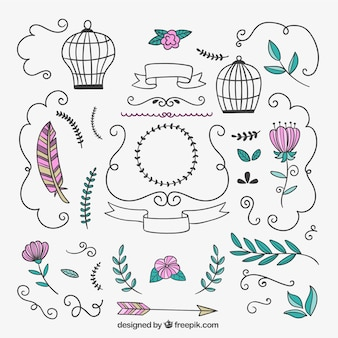Drawn floral ornament and decorations
