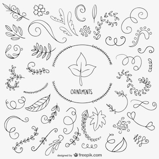 Drawn leaves and ornaments