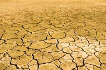 Drought. Backgrounds