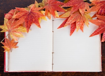 Dry autumn leaves on an open book