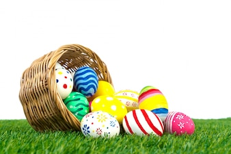Easter Eggs on Fresh Green Grass over white background