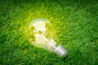 エコのコンセプト - 電球は、草の中に育ちます