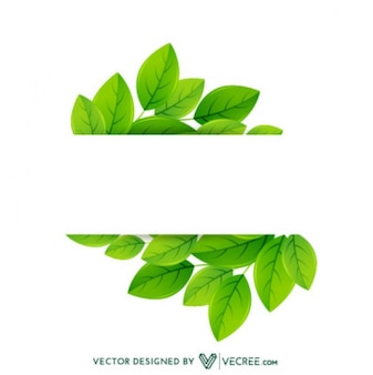 Eco Friendly Leaves Label