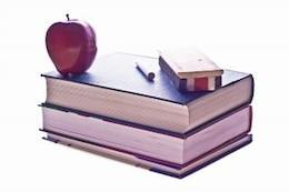 education  university