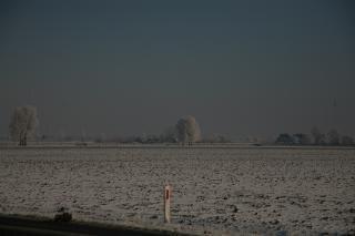 Een witte polder
