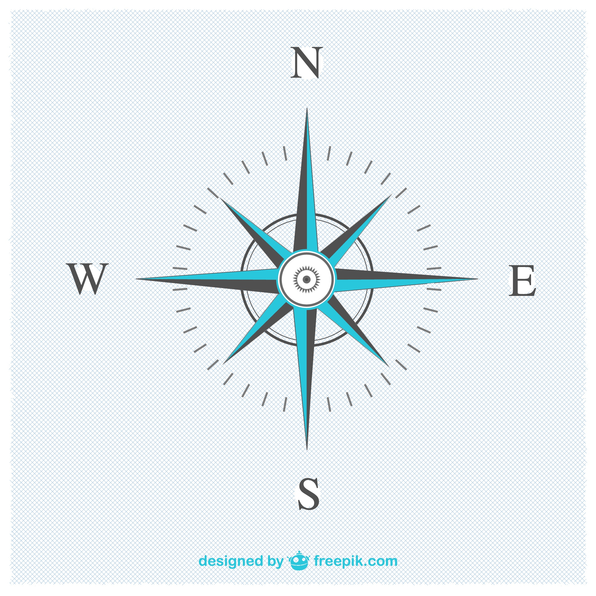 Elegant compass vector