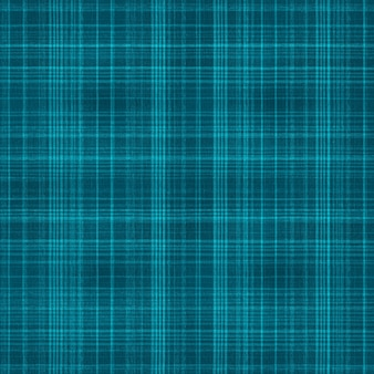 Fabric texture with blue lines