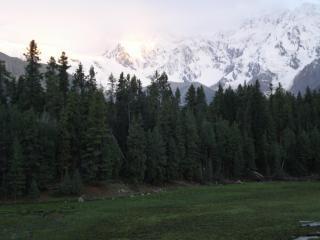 Fairy Meadow, Nanga Parbat, nanga