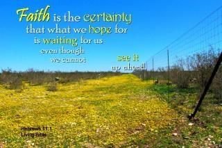 faith is the certainty