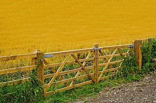 fence agriculture farm gate job bread crop flour