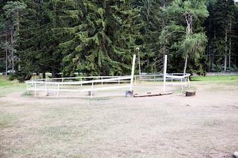 自然界の馬のためのフェンス