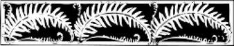 fern border