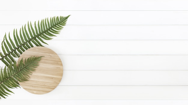 Fern leaves and circle wooden plate over white wood pannels.