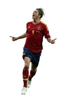 Fernando torres   spain national team