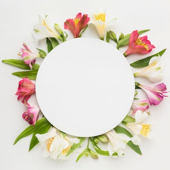 Flat lay colorful alstroemeria with blank circle