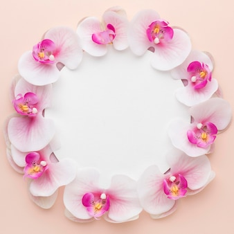 Flat lay pink orchids with black circle