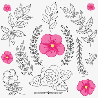 Floral elements in hand drawn style