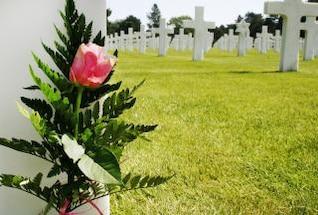 flower at grave