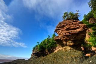 flowerpot rocks   hdr  scenic