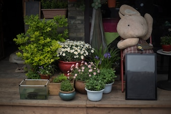 Flowerpots and a cuddly toy