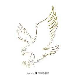 Flying eagle sketch vector