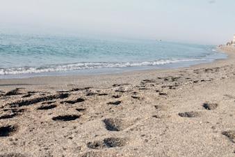 Footprints by the seashore