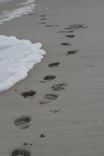 Footprints In The Sand, beach