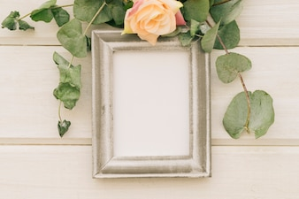 Frame, leaves and a flower