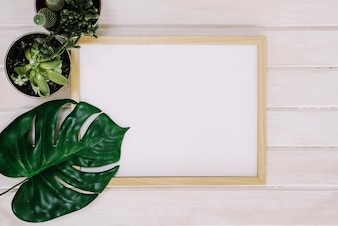 Frame with leaf and plants