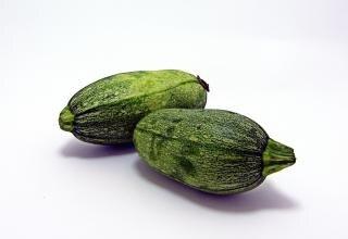 Fresh green zucchini
